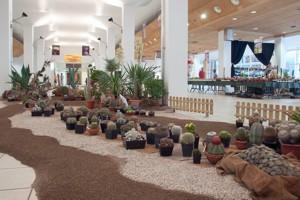 Eurocactus - Esposizione Internazionale di Cactus e Succulente - 14° edizione